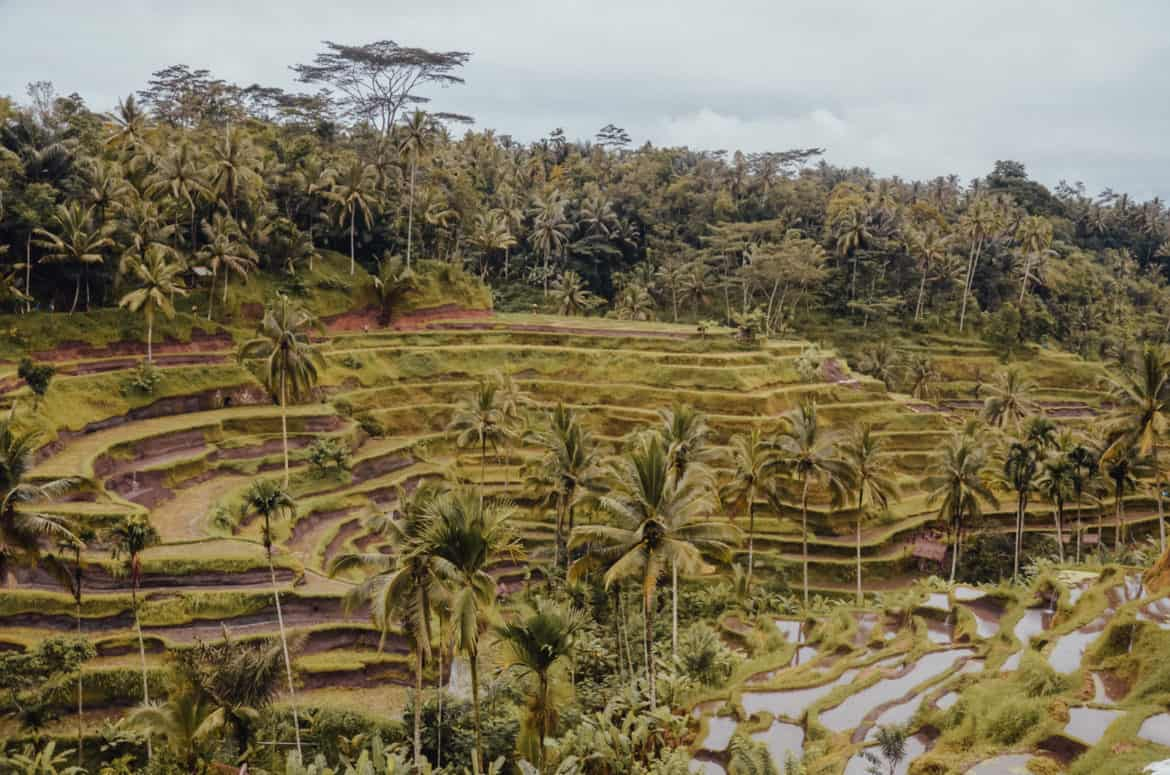 Bali in December: Worth It? Best Things to Do in Bali When